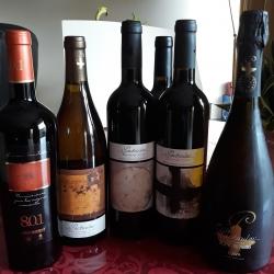 TROUSSE DE DEGUSTATION BODEGA SAN VALERO- PARTICULAR 6 bouteilles